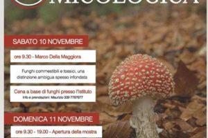 mostra micologica 2018 istituto tecnico agrario Anzilotti Pescia