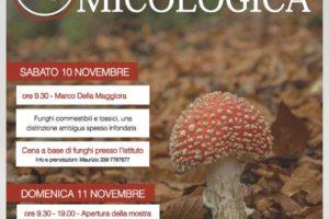 mostra micologica Istituo Tecnico Agrario, funghi, Pescia