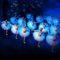 st petersburg ballett swan lake balletto di san pietroburgo lago dei cigni al Pacini pescia