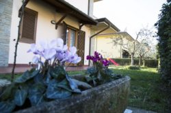 b&b bed and breakfast nuovo paradiso di mario rinaldi a Pescia