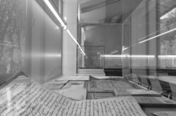 20x15 opere su carta per l'archivio storico magnani pescia