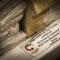 Premiazione locale fotografi Wiki Loves Monuments 2018 di Pescia