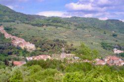 castello villa garzoni giardini collodi pescia