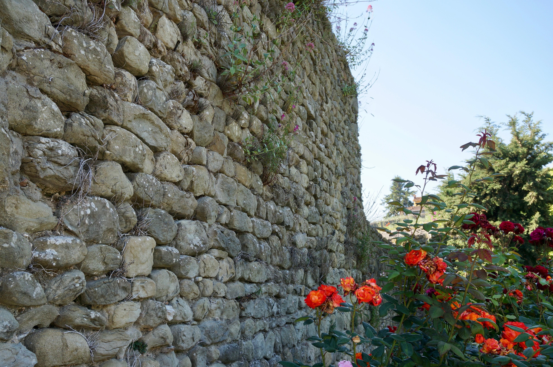 tratto mura città di Pescia