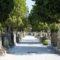 viale accesso cimitero monumentale pescia