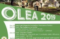 OLEA 2019 ISTITUCO TECNICO AGRARIO ANZILOTTI PESCIA