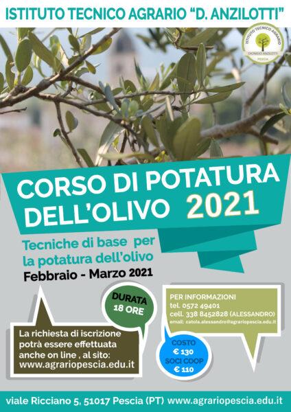 corso-potatura olivo istituto tecnico agrario anzilotti pescia